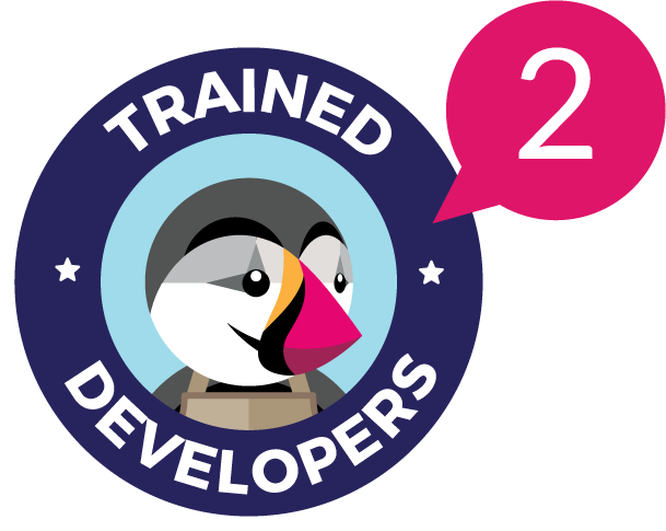 202 ecommerce Trained Developers